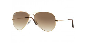 AVIATOR LARGE METAL RB3025 001/51